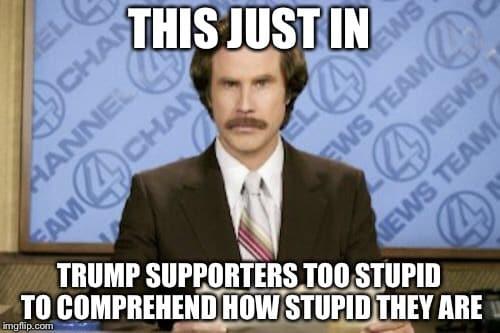 Image result for Idiotic Trump