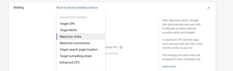 Bidding Options Google Adwords