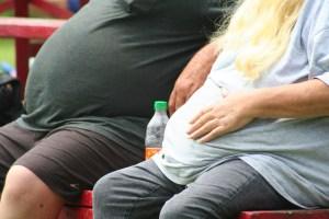 obesidad pareja