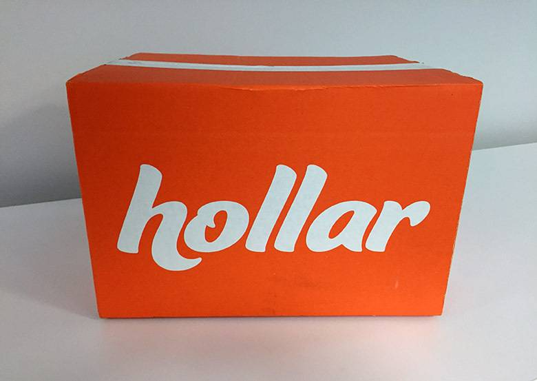 Is Hollar.com A Legit Website? A Hollar.com Review
