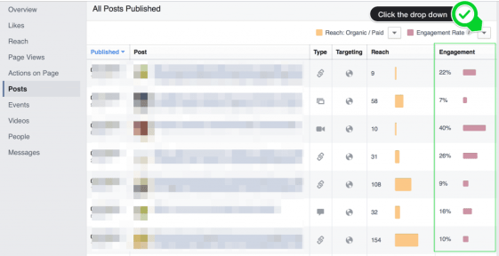 Example of a Facebook Engagement Rate