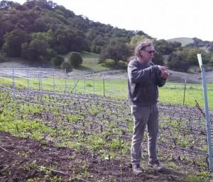 Bonny Doons winemaker in his vineyards