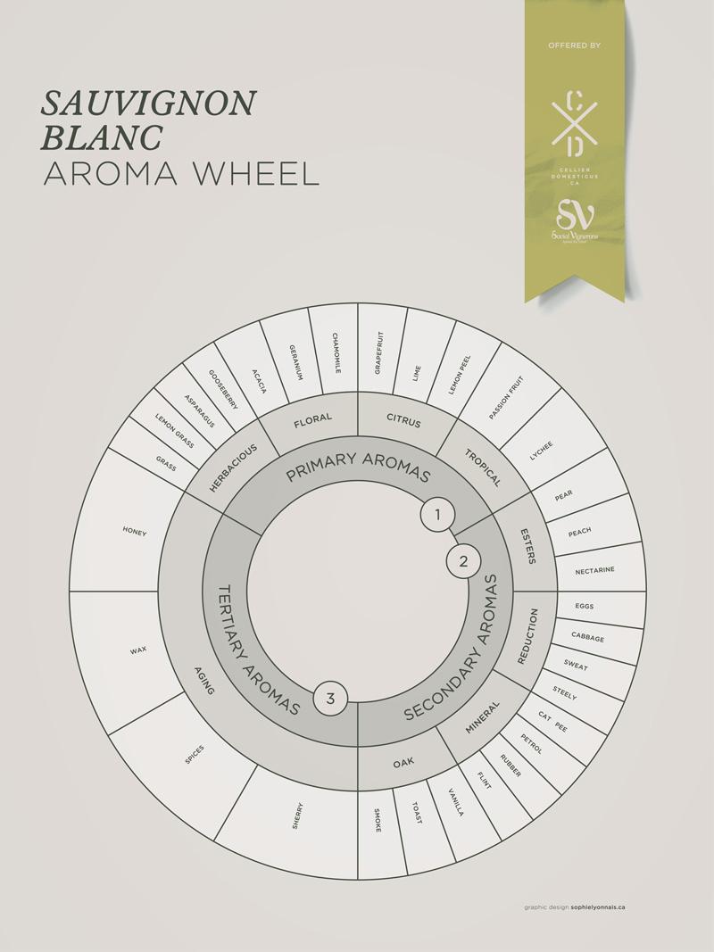 Sauvignon Blanc grape variety wine aroma profile wheel flavors fruit spices Social Vignerons