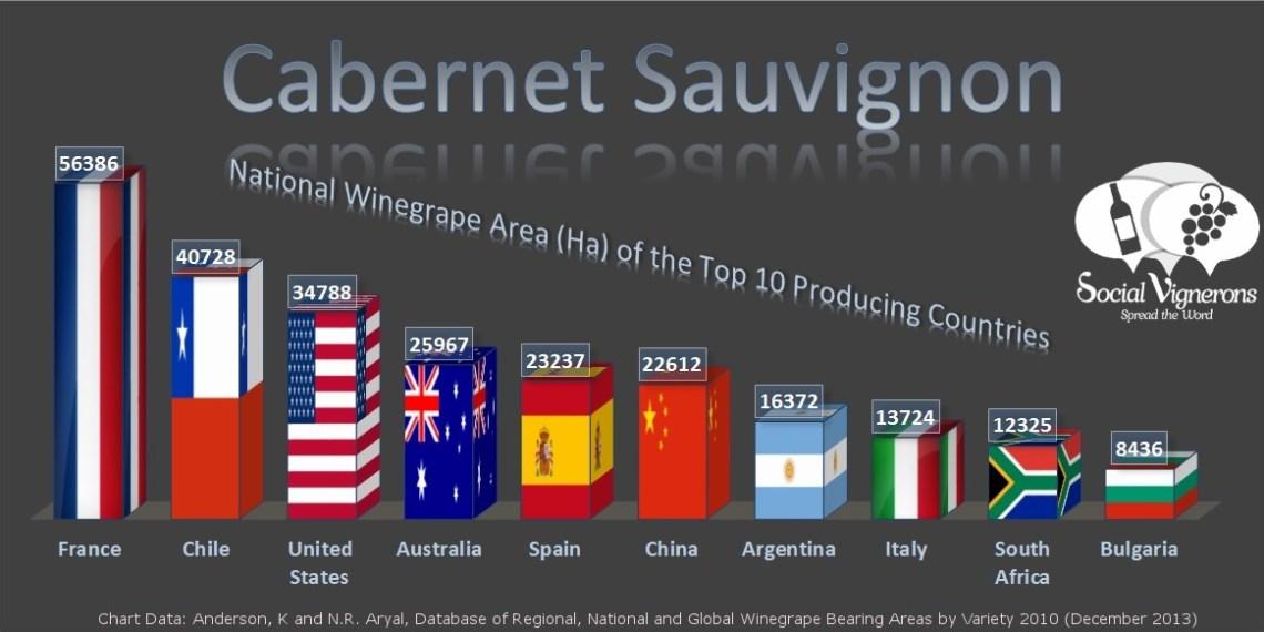 Top 10 Countries Vineyard Surface Area Cabernet Sauvignon Social Vignerons
