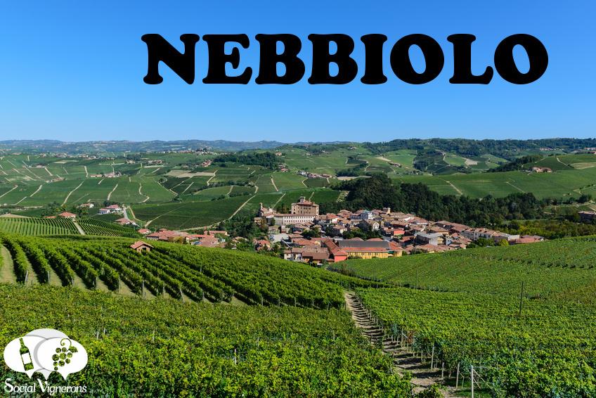 Quick Guide to Nebbiolo Grape Variety & its Italian Wine Regions