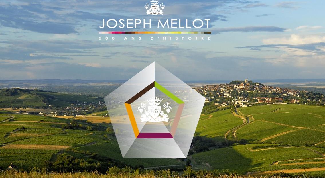 Domaine Joseph Mellot Sancerre Village Landscape Vineyards Header social vignerons