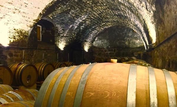 Scala Dei wine barrel roon underground catalunya winery travel destination
