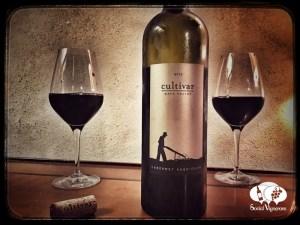 2013 Cultivar Cabernet Sauvignon Napa Valley wine bottle glass