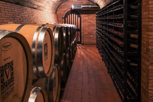 Viticcio WInery Chianti CLassico Tuscany barrel room cantina