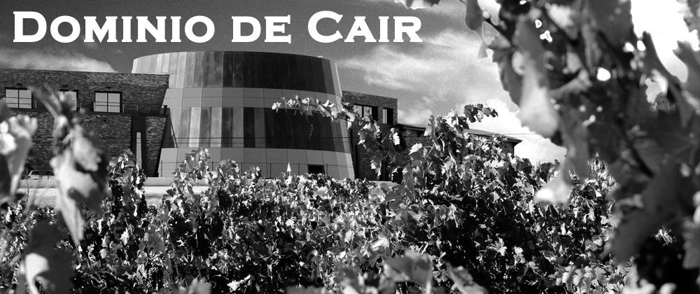bodega-dominio-de-cair-exterior-vineyard-building-round-barrel-room-ribera-del-duero