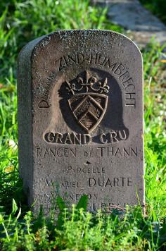 rangen-de-thann-grand-cru-zind-humbrecht-stone-sign