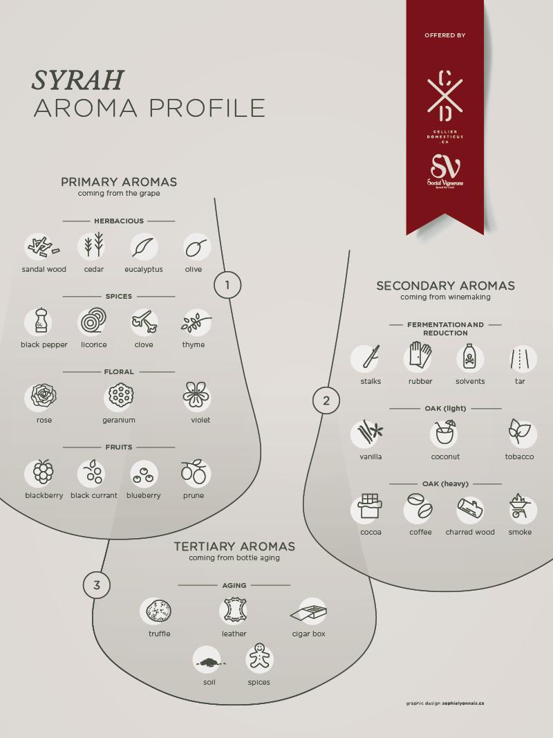 cxd_infographic_syrah_profile_72dpi