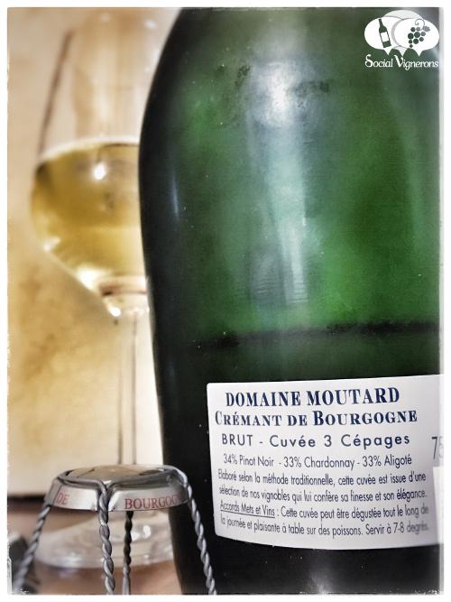 moutard-cremant-de-bourgogne-3-cepages-brut-sparkling-wine-from-burgundy-review-back-label