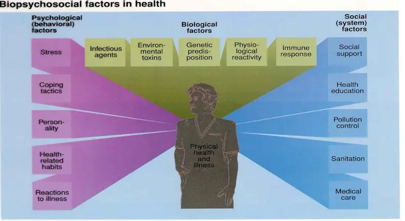 Mental health social work practice in canada pdf
