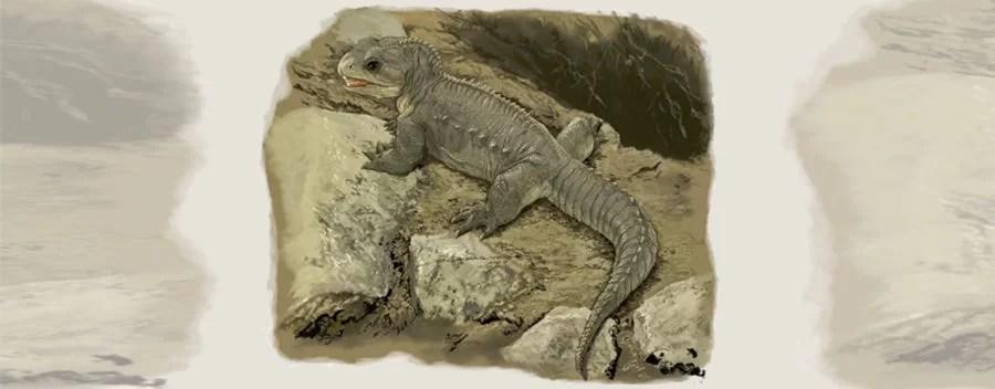 Descoberto fóssil de pequeno réptil do Triássico no Brasil