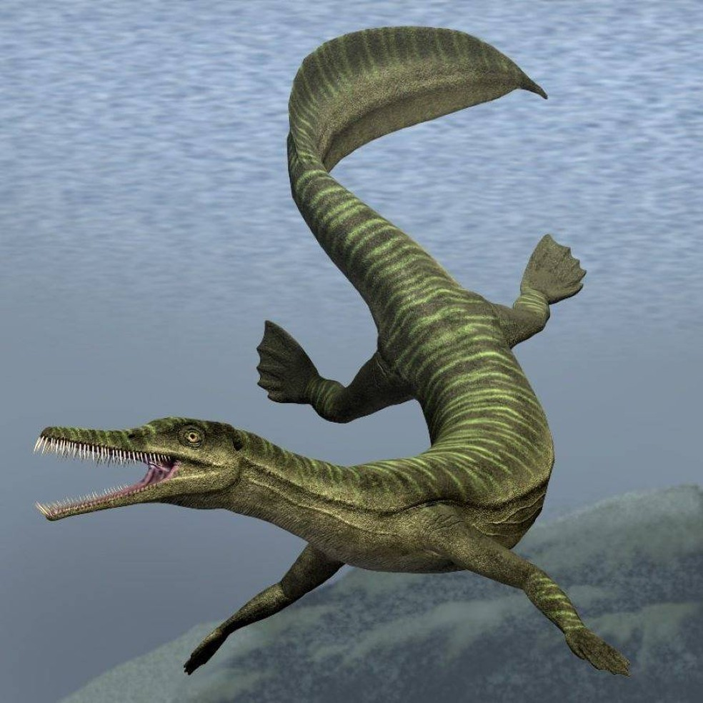 Fósseis de 280 milhões de anos