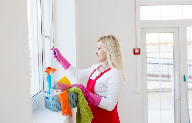 exemple de business plan rédigé de société de nettoyage
