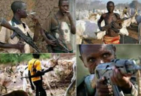 The Only Solution To Problem Of Fulani  Herdsmen –Nassarawa Senator Sodangi