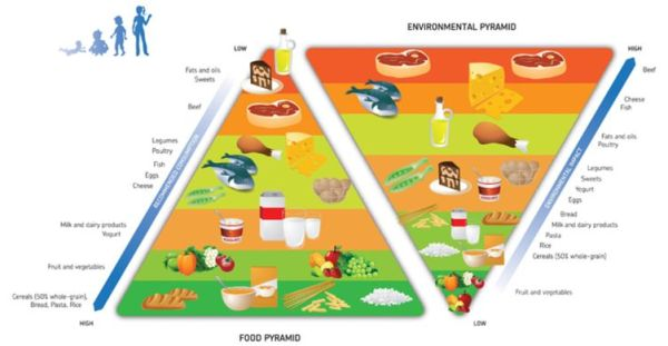 carbon footprint of food pyramid society zero  zero waste food glasgow