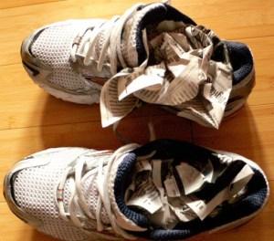 Newspapers-ShoeDryers