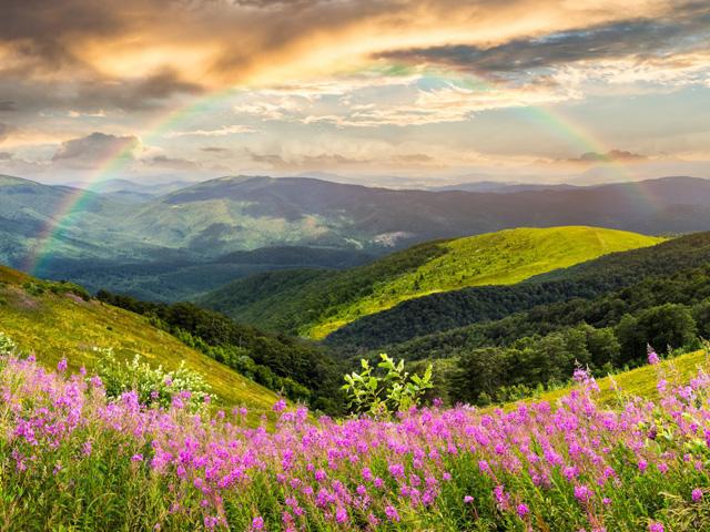 SUCAP Peaceful Spirit rainbow
