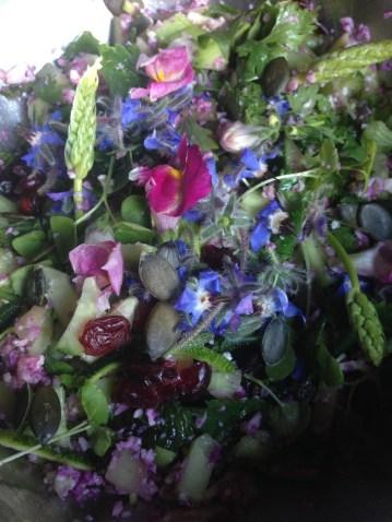 Taboulé de chou avec fleurs, asperges sauvage, cranberries, concombre...