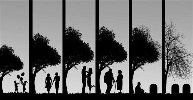 Qual'è il senso della vita