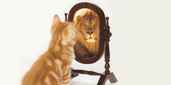 fiducia in se stessi