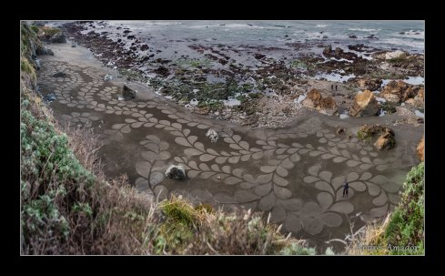'Kelp I' -detail 2012