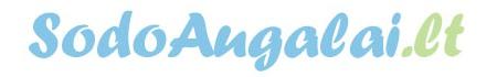 SodoAugalai.Lt Logo