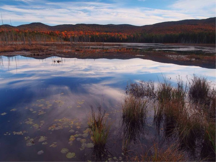 The reflection of the sky tempted us into a late afternoon roadside stop at this anonymous pond.