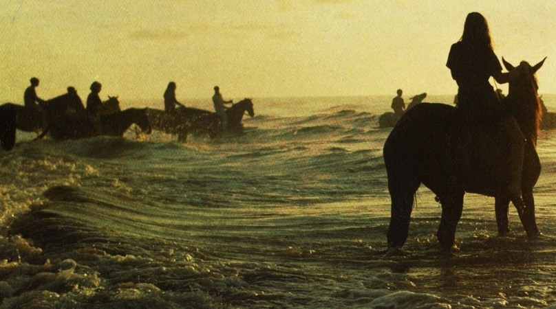 MP3] Foals - My Number | Sodwee com