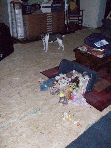 The carpet in the living room is almost all pulled