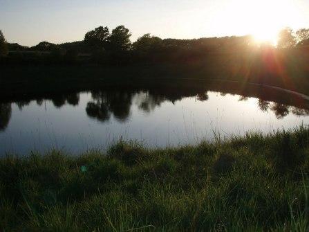 soelleroed-fiskesoe-solnedgang