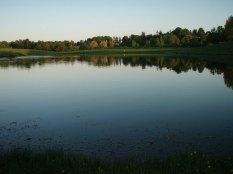 soelleroed-fiskesoe-vandspejl