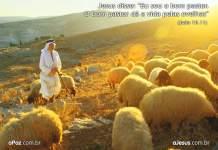 Teologia Pastoral e Pratica na Igreja