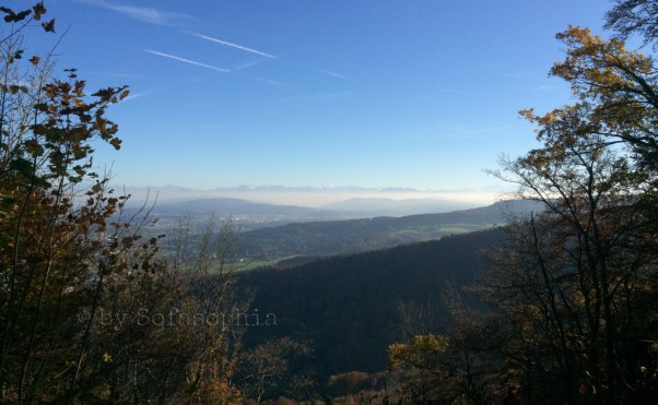 Fernblick vom Linnerberg Richtung Süden - Innerschweizer Alpenkette