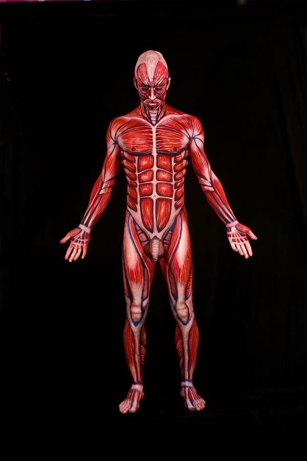 La anatomía humana pintada en cuerpos reales - Sofía Sayegh • Diseño ...