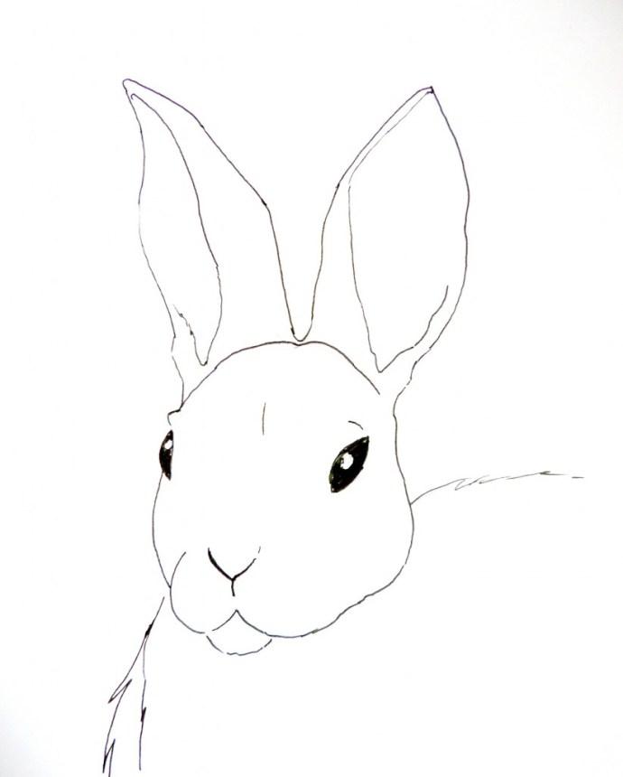 bunny in fineliner