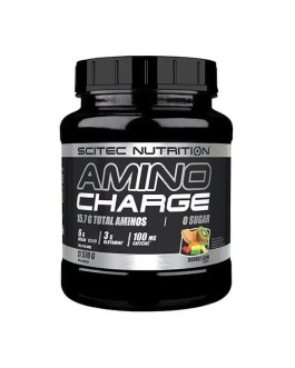 Amino Charge 570g – Scitec Nutrition