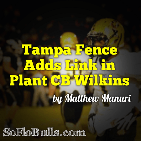 Tampa Fence Adds Link in Plant CB Wilkins by Matthew Manuri