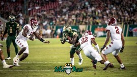 108 - Temple vs. USF 2017 - USF RB D'Ernest Johnson by Dennis Akers | SoFloBulls.com (5659x3183)