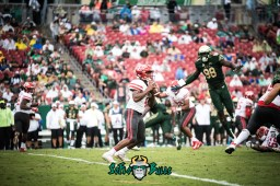 33 - USF vs. Houston 2017 - USF DE Mike Love leaping at Houston QB D'Eriq King by Dennis Akers | SoFloBulls.com (6016x4016)
