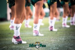 49 - USF vs. Houston 2017 - USF Cheerleaders Boots by Dennis Akers | SoFloBulls.com (6016x4016)