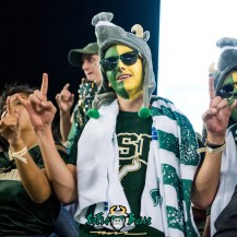 77 - Cincinnati vs. USF 2017 - USF Fan in the Crowd by Dennis Akers | SoFloBulls.com (4000x4000)