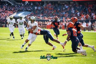 20 - USF vs. Illinois 2018 - USF TE Mitchell Wilcox by Dennis Akers | SoFloBulls.com (4114x2746)