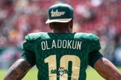 21 - Georgia Tech vs. USF 2018 - USF QB Chris Oladokun by Dennis Akers | SoFloBulls.com (6016x4016)