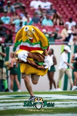 83 - Georgia Tech vs. USF 2018 - USF Football Hot Dog Contest Hamburger Mascot by Dennis Akers   SoFloBulls.com (4016x6016)