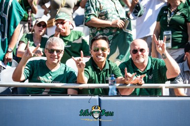 50 - USF vs. Illinois 2018 - USF Fans in Crowd at Soldier Field by Dennis Akers | SoFloBulls.com (4596x3068)