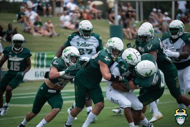 106 - USF RB Johnny Ford AJ Franco Brock Nichols Spring Game 2019 by Matthew Manuri 1387 (6016x4016)